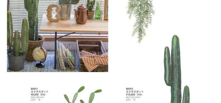 木製ボックス、イミテーションサボテンなど 新商品・再入荷商品のご案内